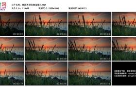 高清实拍视频丨移摄黄昏的湖边落日