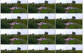 4K实拍视频素材丨乡村风光 小溪 石桥 流水 农田 电线