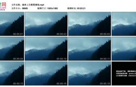高清实拍视频丨森林上空晨雾缭绕