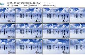 高清实拍视频丨蓝天白云下飞鸟在河边的木桩上盘旋停留