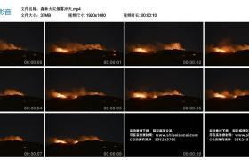 高清实拍视频素材丨森林火灾烟雾冲天