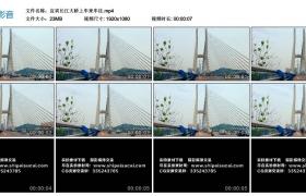 高清实拍视频丨宜宾长江大桥上车来车往