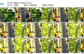 高清实拍视频丨移摄逆光下的山地自行车