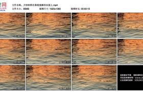 高清实拍视频丨夕阳映照在荡着涟漪的水面上