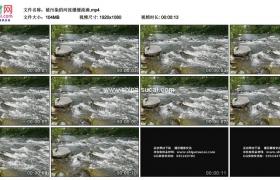 高清实拍视频素材丨被污染的河流缓缓流淌