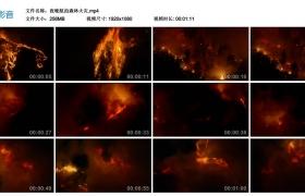高清实拍视频丨夜晚航拍森林火灾