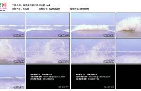 高清实拍视频丨海浪撞击岩石溅起水花