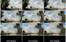 高清实拍视频素材丨森林大火消防直升机穿过浓烟灭火