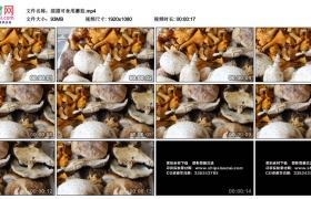 高清实拍视频素材丨摇摄可食用蘑菇