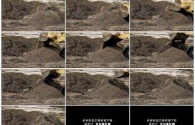 高清实拍视频素材丨特写用挖掘机清理河道泥沙