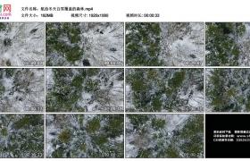 高清实拍视频丨航拍冬天白雪覆盖的森林