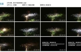 高清实拍视频丨夜空中绽放的焰火