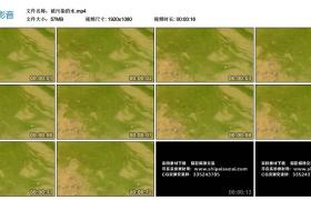 高清实拍视频素材丨被污染的水