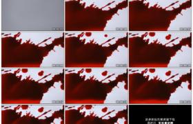 高清实拍视频素材丨红色墨水泼洒到白纸上