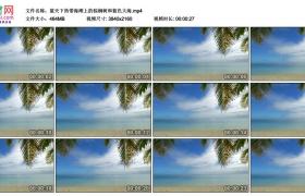 4K视频素材丨蓝天下热带海滩上的棕榈树和蓝色大海