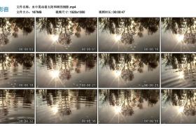 高清实拍视频丨水中晃动着太阳和树的倒影