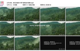 高清实拍视频素材丨绿色的森林中雾气缭绕延时摄影