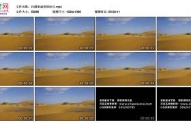 高清实拍视频丨沙漠里起伏的沙丘