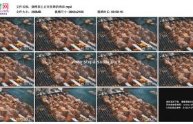4K实拍视频素材丨烧烤架上正在炙烤的肉串