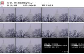高清实拍视频丨冬季暴雪中的美国国会大厦
