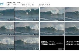 高清实拍视频丨大海里的冲浪者