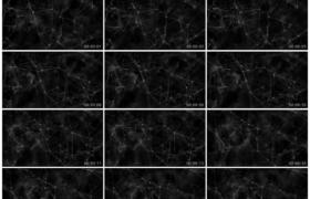 高清动态视频素材丨科技网络关系动态背景
