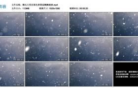 高清实拍视频丨鹅毛大雪在黑色背景前飘飘洒洒