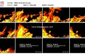 高清实拍视频素材丨升腾的火焰 窜动的火苗