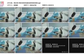 4K实拍视频素材丨兽医用灯照射着狗的眼睛查看狗狗的病情