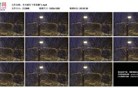高清实拍视频丨冬天路灯下雪花飘飞