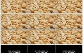 4K实拍视频素材丨特写油炸花生米