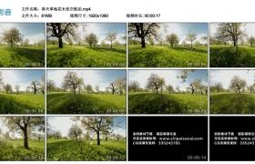 高清实拍视频素材丨春天草地花木低空航拍