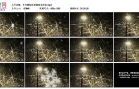 高清实拍视频素材丨冬天路灯照射着雪花降落
