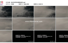 高清实拍视频素材丨流动的浓雾弥漫覆盖森林