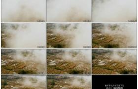 4K实拍视频素材丨航拍晨雾下的中国元阳梯田