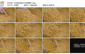 高清实拍视频素材丨双手捧起金黄的玉米粒缓缓落下