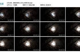 高清实拍视频丨夜晚的树林上空乌云笼罩月亮