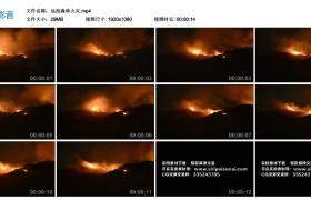 【高清实拍素材】远拍森林火灾