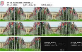 4K实拍视频素材丨联合国建筑前林立的各国国旗