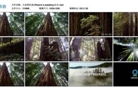 Nature is speaking丨大自然在说话-红木(高清无水印)