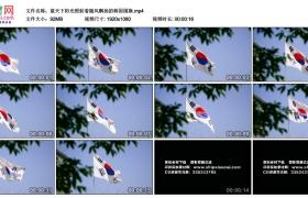 高清实拍视频丨蓝天下阳光照射着随风飘扬的韩国国旗