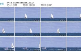 高清实拍视频丨白色的帆船在蓝色的海面上航行