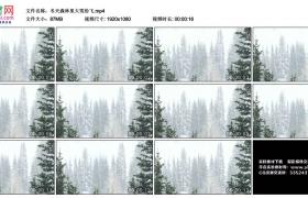 高清实拍视频丨冬天森林里大雪纷飞