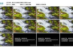 高清实拍视频丨溪水从长着绿色苔藓的小溪流过