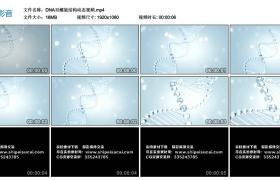 【高清动态素材】DNA双螺旋结构动态素材