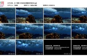 高清实拍视频素材丨水下摄影 在海底拍摄翻滚的海浪
