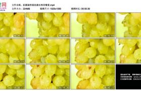 高清实拍视频丨拍摄旋转着挂满水珠的葡萄