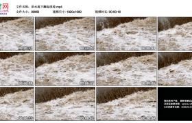高清实拍视频丨洪水流下翻起浪涛