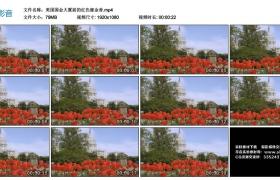 高清实拍视频丨美国国会大厦前的红色郁金香