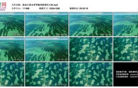 高清实拍视频丨航拍长着水草等藻类植物的大海